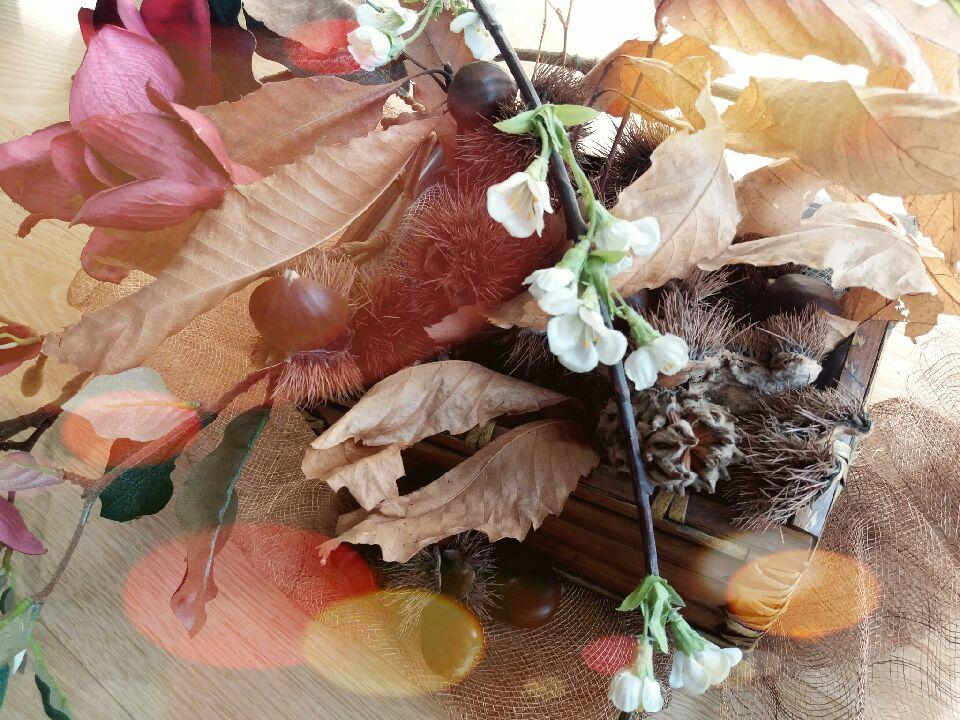 Experiência de Outono por terras transmontanas – Festa da castanha emVinhais