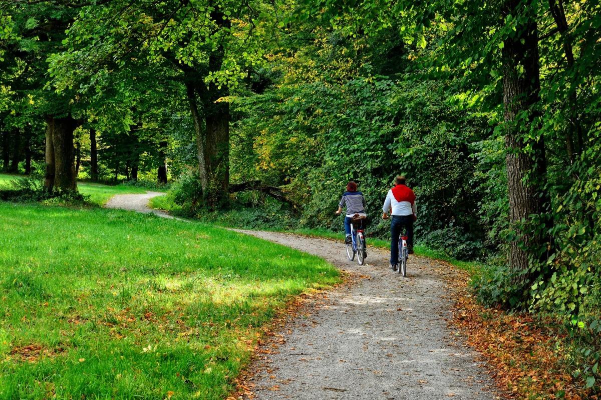 Parques verdes e hábitos de vida#2