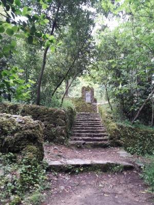 Via sacra1