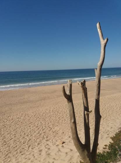 praia do navio 2